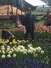 Весна глазами художников